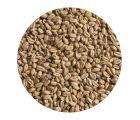 Солод Пшеничный Wheat ЕВС 4-6 (Курский солод)